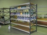 Longspan shelving stacks up as a great option